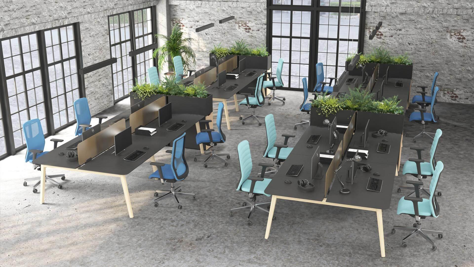 open space z roślinami